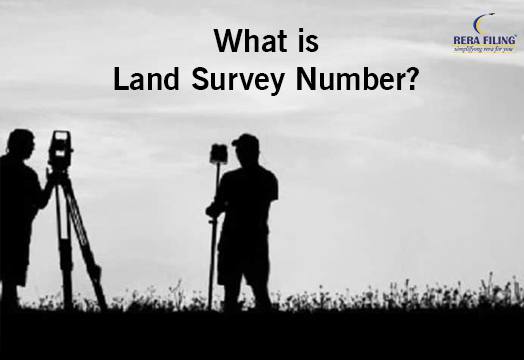 What is Land Survey Number?