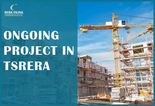 Ongoing Project in TSRERA